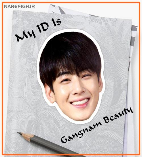 دانلود سریال کره ای My ID Is Gangnam Beauty 2018 محصول jtbc TV