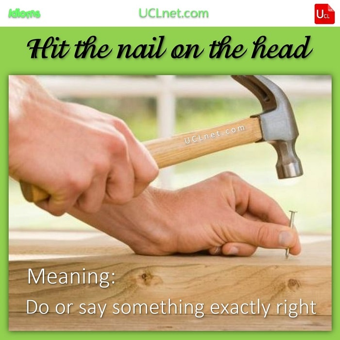 English Idiom: Hit the nail on the head