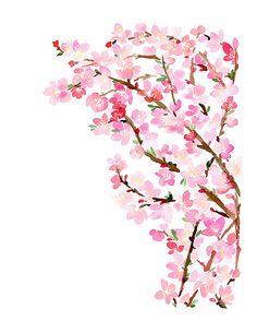 2701fbd4e5e9f9237911ce8fc2ea0651_watercolor_print_watercolor_flowers.jpg (236×305)