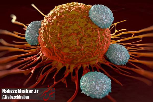 """""""سرطان"""" از اصلیترین دلایل مرگ و میر زنان در گیلان است"""
