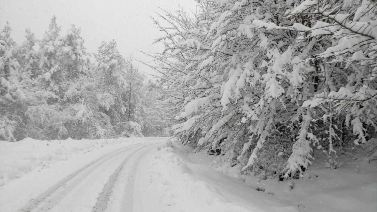 اقامتگاه بوم گردی گیلان در زمستان