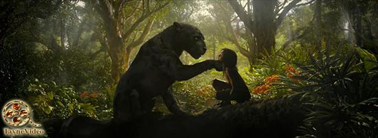 دانلود فیلم موگلی mowgli 2018 با زیرنویس فارسی