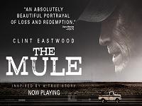 دانلود فیلم قاچاقچی - The Mule 2018