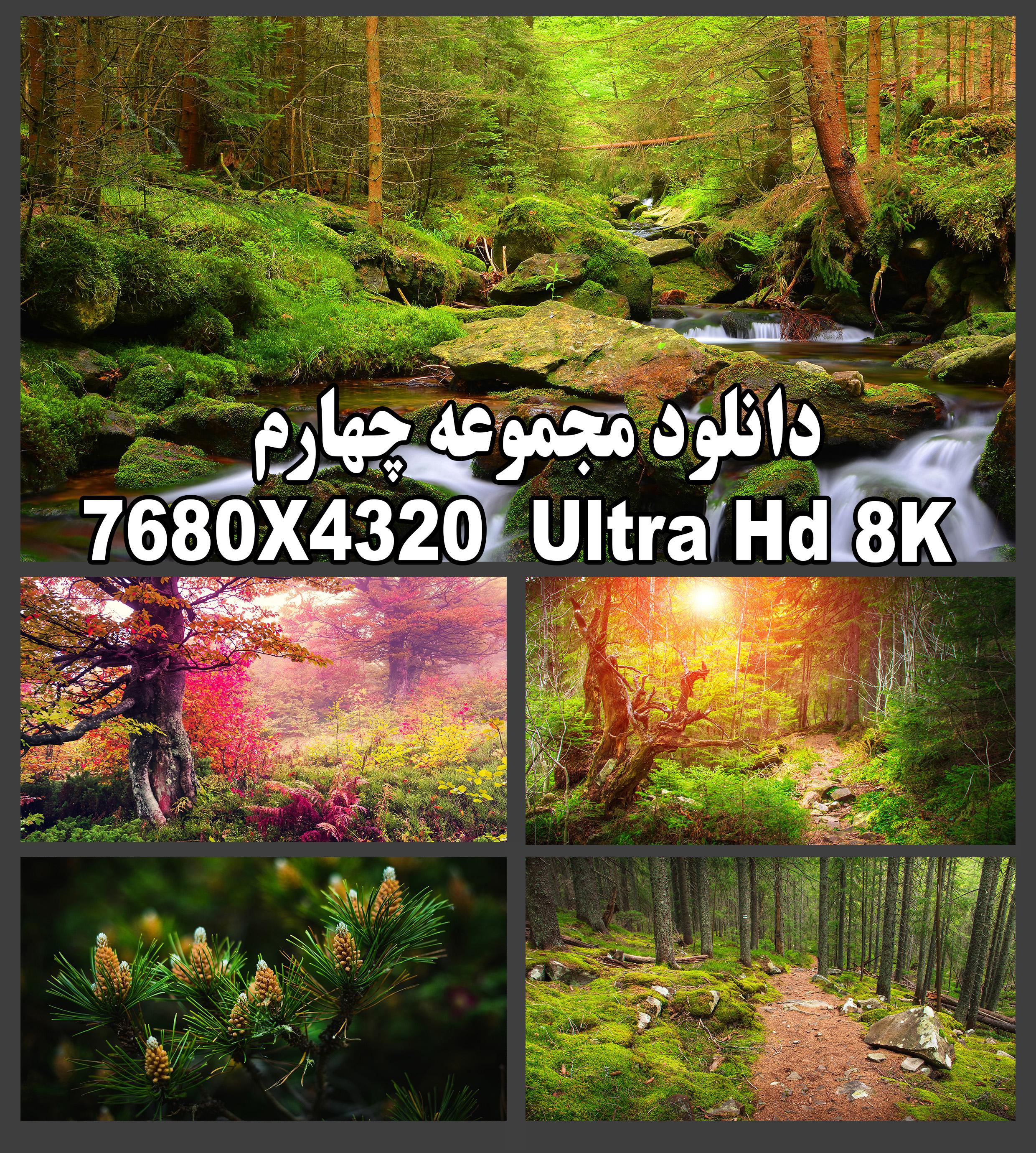 دانلود عکس طبیعت با کیفیت بالا 8k
