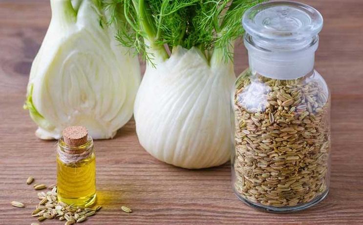 گیاهی که درمان بسیاری از مشکلات زنانه است