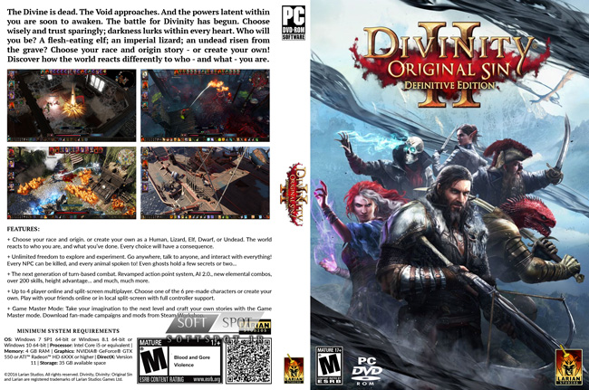 Divinity Original Sin 2 Definitive Edition Cover