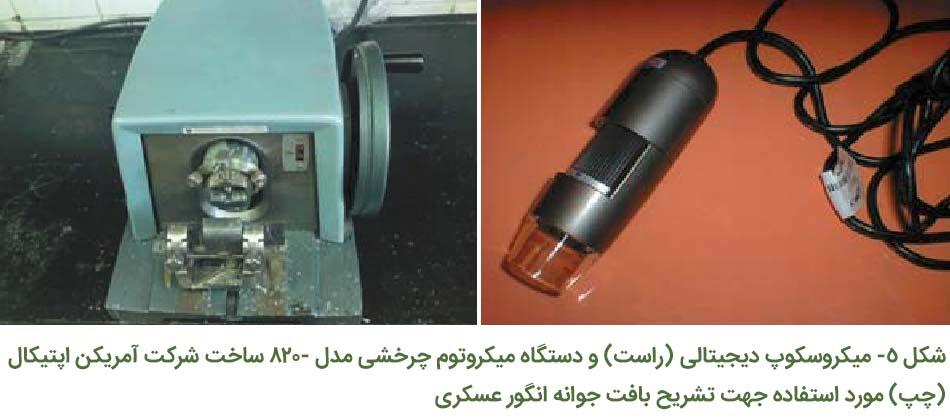 میکروسکوپ دیجیتالی و دستگاه میکروتوم چرخشی