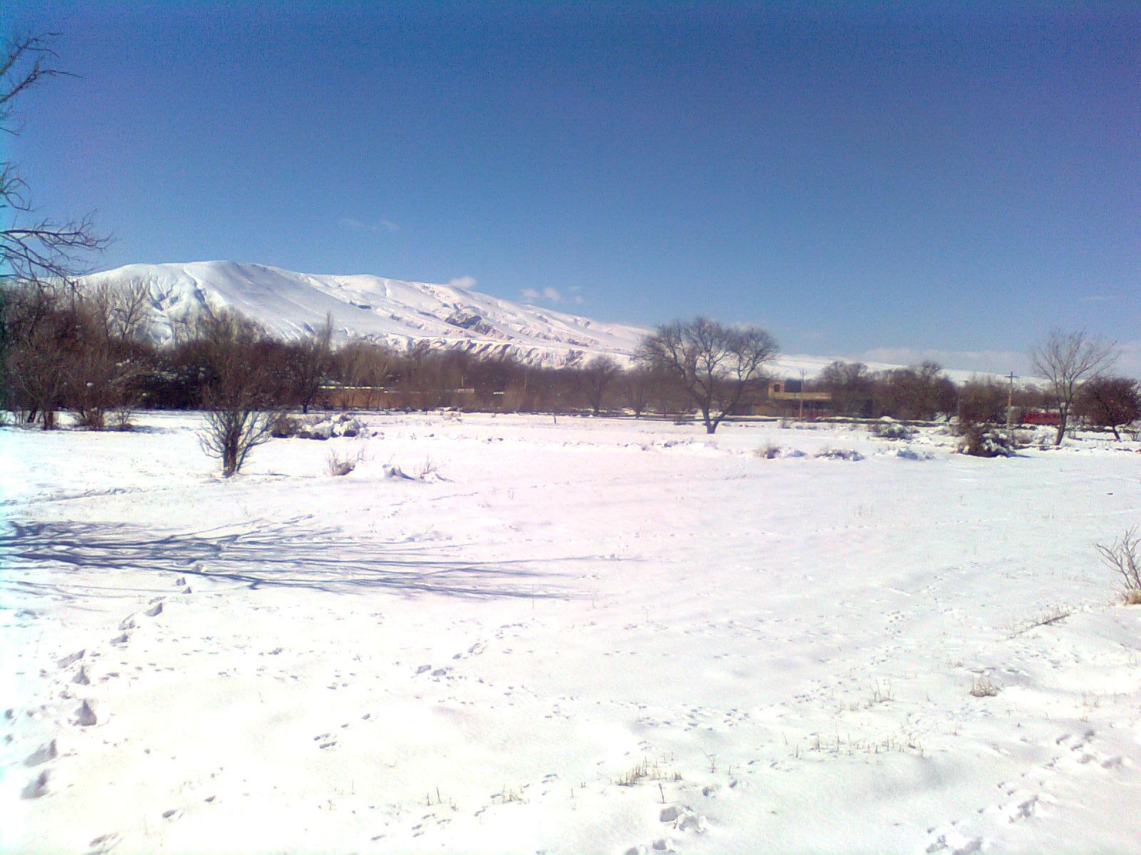 آلبوم زمستانی دانباران