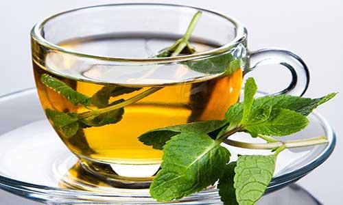 ۸ گیاه دارویی برای سلامت و تقویت مغز