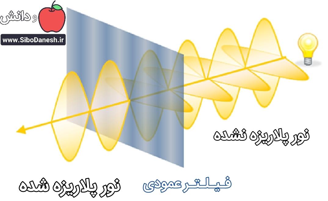 پلاریزاسیون نور یا قطبش نور چیست؟