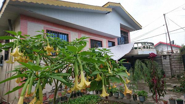 ویلا 240 متری در یکی از روستاهای لشت نشا