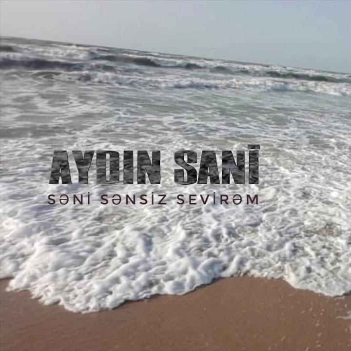 http://s8.picofile.com/file/8354966918/04Ayd%C4%B1n_Sani_Seni_Sensiz_Sevirem.jpg