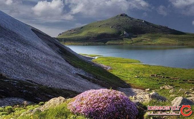 سیلوانا آذربایجان