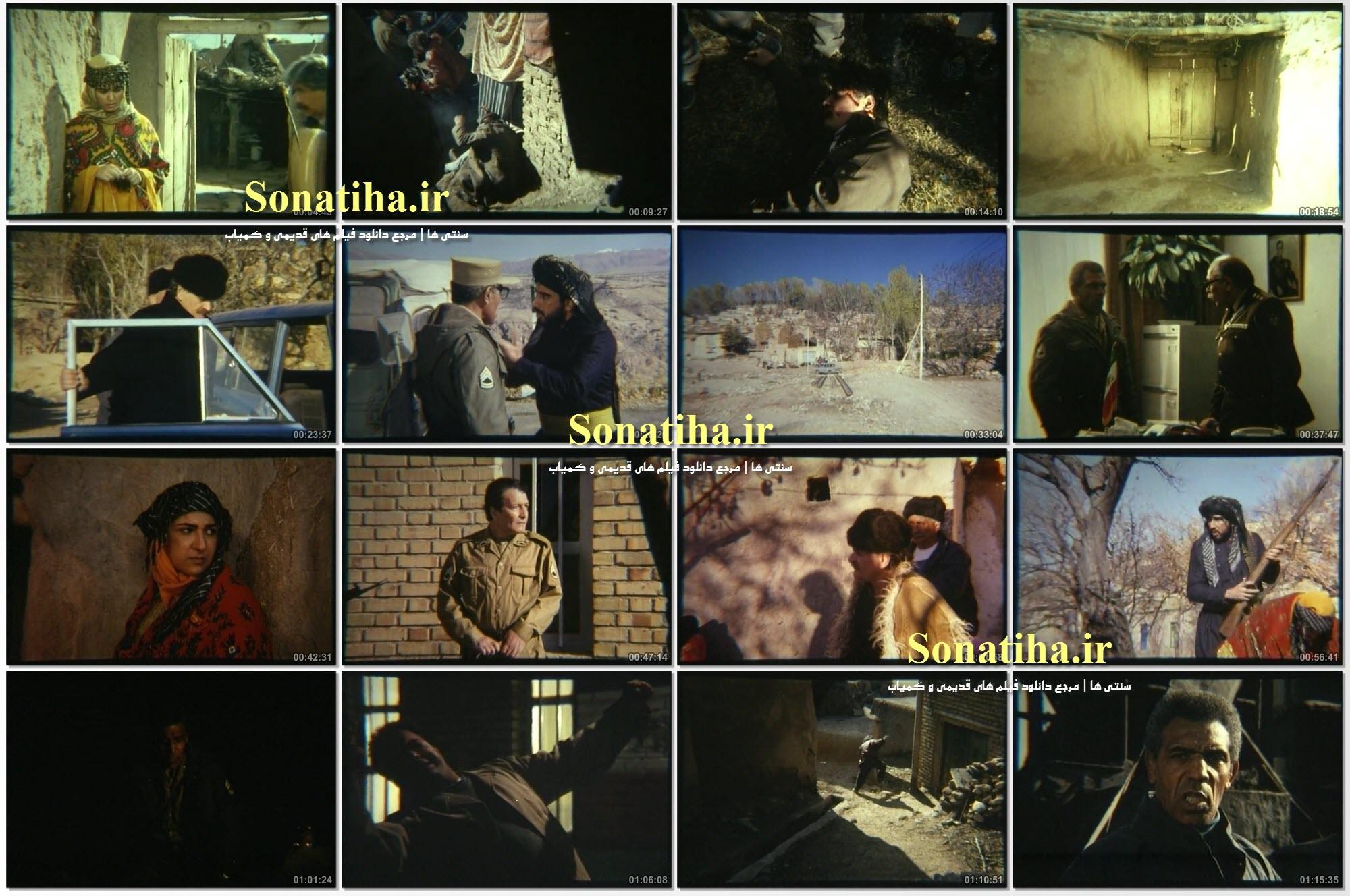 تصاویری از فیلم گاومیش ها