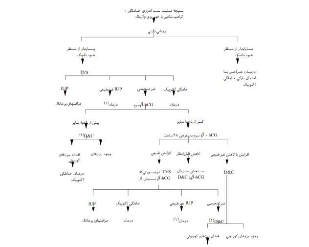 دانلود رایگان خلاصه کتاب ویلیامز فارسی