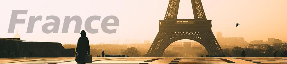 خرمای صادراتی به فرانسه