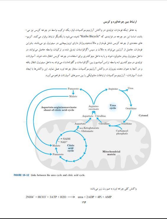 دانلود جزوه بیوشیمی عمومی pdf دانلود کتاب بیوشیمی عمومی pdf