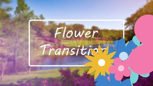 مجموعه ویدئو ترنزیشن های آماده گل : Flower Transition