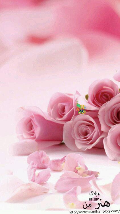 http://s8.picofile.com/file/8367672142/404762b449abbd4952459a4f243a01d0.jpg
